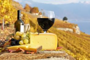 Schafskäse, mediterraner Käseteller, Käseglocke Degen
